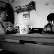 Fragmenty_venkova_005